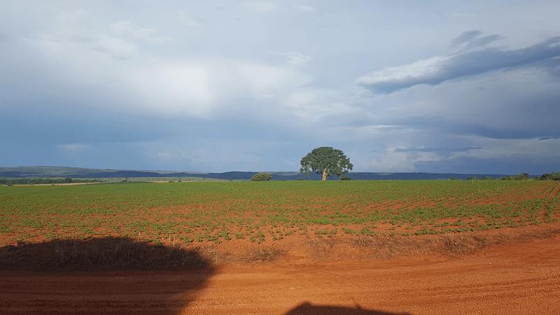 Fazenda com 424 hectares à venda